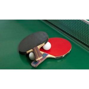 Supplier & distributor tenis meja