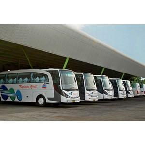 Daftar Perusahaan Jual Bus - Harga Terbaru 2021 | Indonetwork