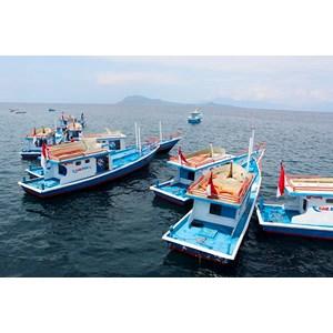 Supplier & distributor kapal ikan
