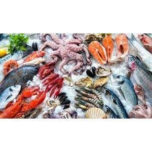 Daftar Perusahaan Jual Makanan Laut Murah | Indonetwork