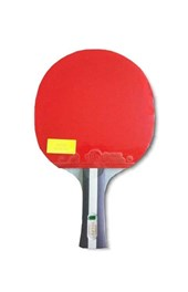 Table Tennis Station