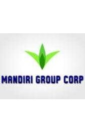MANDIRI GROUP
