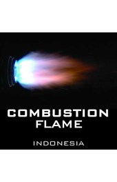 Combustion Flame Indonesia