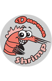 Darma Shrimp
