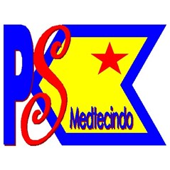 psm group ( privo sakurazy medtecindo)