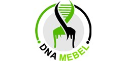 DNA MEBEL