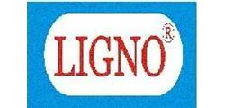 PT. Ligno Specialty Adhesive