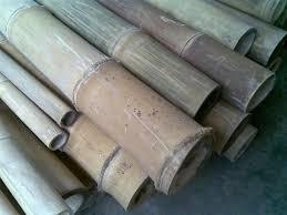 Bambu Petung