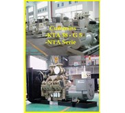 Gas Generating Set & Marine Engine