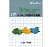 Toyo Denki Induction Motor