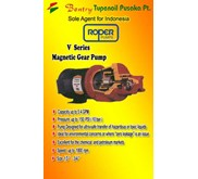 MAGNETIC GEAR PUMP ' ROPER'