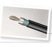 FIBER OPTIC SYSTIMAX