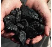 Indonesian Steam Coal any Calories