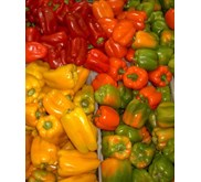 cabai paprika / bell peppers