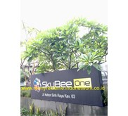 Neonbox Skybee One