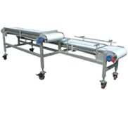 Conveyor Food processing