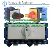 Switch Disconnecting 63A 3 Phase IP65 KG64B T903/SGZ001VE