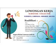 LOKER COLLECTOR & SURVEYOR