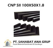 CNP SII 100X50X1.8