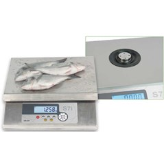 WATER PROOF & COLD STORAGE WEIGHING SCALE