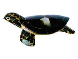 Jual turtle crafts shell