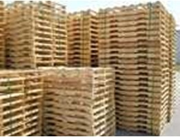 Pallet Kayu (Wooden Packaging) & Mahoni Log/Sawn Timber