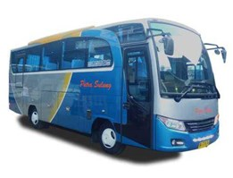 Jual Medium Bus Deluxe