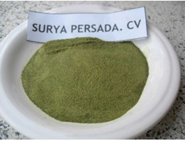 Jual Kratom Powder