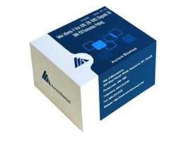 Jual Swine Influenza A virus H1N1 (IVA H1N1) Diagnostic Kit