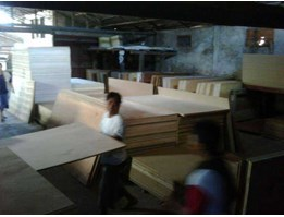 Jual Plywood - Packing or Reject Grade