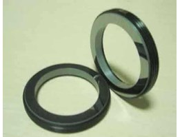 Silicone Carbide Ring SiC Seal Face Indonesia Surabaya
