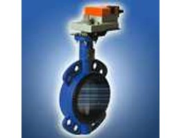 Jual Belimo Butterfly Valve