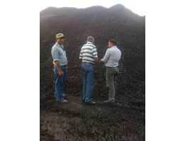 Jual Sell Coal, Joint Operation or Take Over