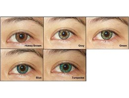 Jual SOFTLENS X2 SPICE