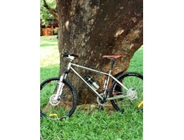 Jual Mountain Bike X/ Country Road