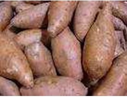 Jual Ubi Jalar / sweet potato
