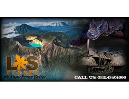 Jual KOMODO ADVENTURE - Komodo Tour - PT Los Flores Tour and Travel - losflores08.blogspot.com