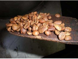 Jual Roasted beans