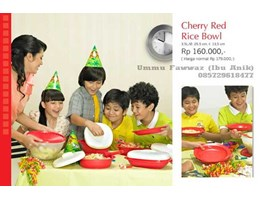 Jual Tupperware Solo  Cherry Red Rice Bowl