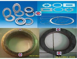 Jual High Performance Seal, Metallic & Semi Metalic Gasket, SWG, Spiral Wound, Asbestos, Non Asbestos, PTFE Gasket, Rubber Gasket, Insulating Gasket, Etc.