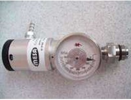 Regulator Gas Metane MESA Type 600