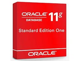 Jual ORACLE DATABASE STANDARD EDITION ONE 11g