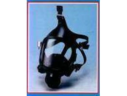 Full Face Respirator Wellsafe
