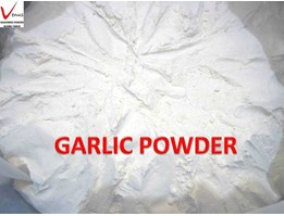 Jual Garlic Powder / Bawang Putih Bubuk