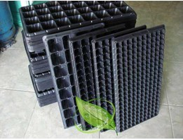 Jual Tray Bibit / Semai / Seedling Tray