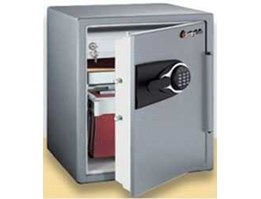 Jual Sentry Safe MS-5635