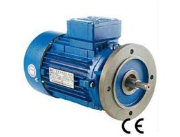 Jual Elektro Motor Flange Mounted China