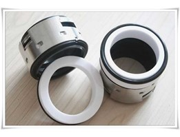 Jual Mechanical Seal AS-E502