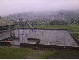 Jual greenhouse