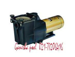 pompa super pump 2 hp Hayward